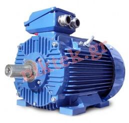 Electric Motor - Y2 - 0.25 kW - 0.34 HP - 380V/50Hz - 2Poles - Β3